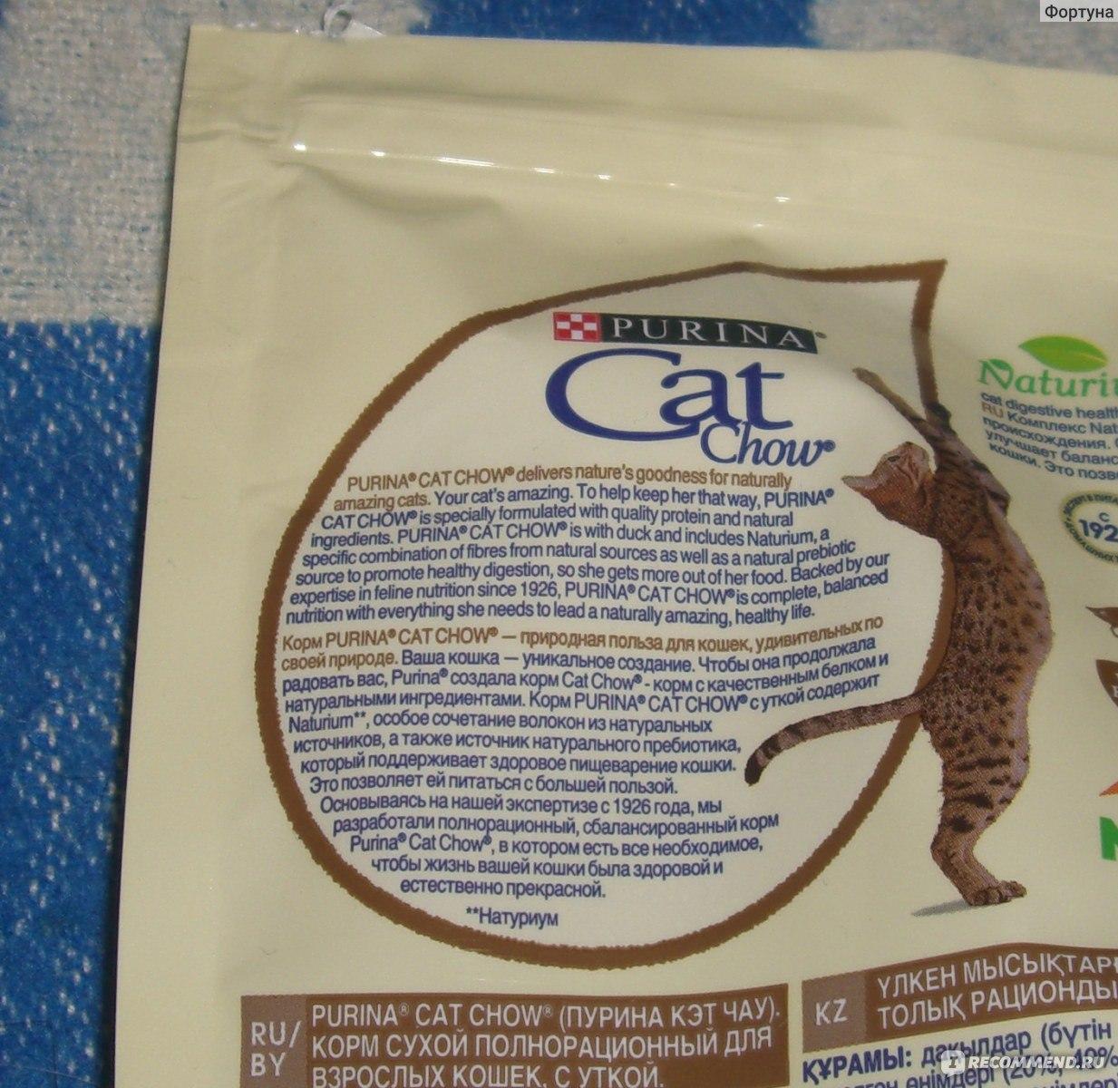 Бренд Кэт Чау для кошек: ассортимент и особенности