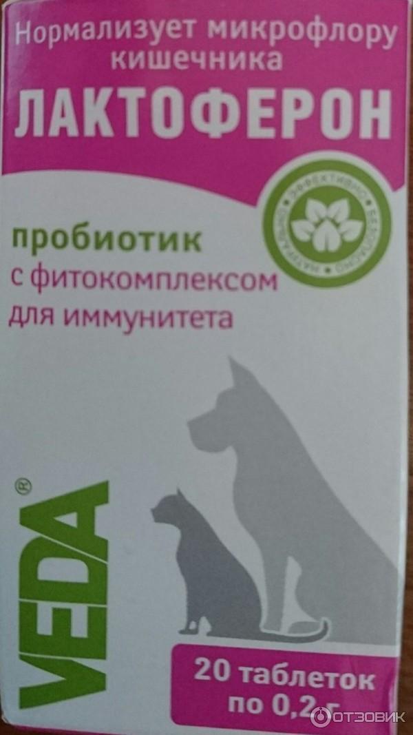 Пробиотики для собак для пищеварения мелких, средних и крупных пород