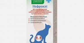 Нефрокэт для кошек