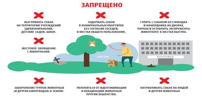 Собака в доме по православию: почему нельзя держать