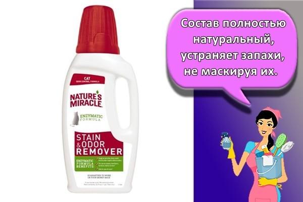 Как убрать запах собачьей мочи с ковра в домашних условиях