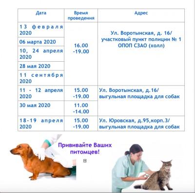 Прививка от бешенства кошке: когда делать вакцину