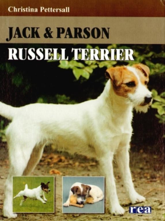Джек рассел терьер и джек парсон терьер: отличия