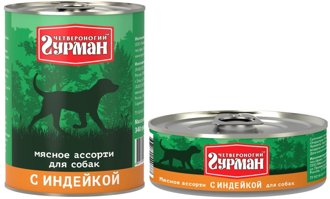 Четвероногий гурман: консервы для собак и сухие корма