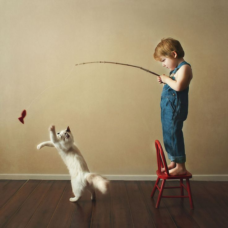 Нужно ли и как правильно играть с кошкой?