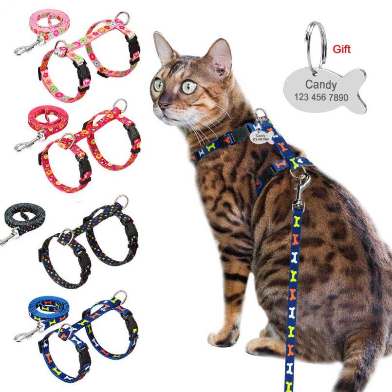 Как надеть шлейку на кошку: варианты с различными видами