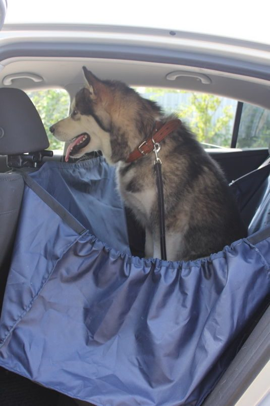Чехол для перевозки собак в автомобиле (накидка на заднее сиденье)