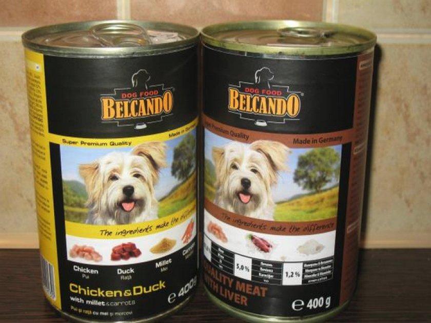 Влажный корм для собак (консервы): рейтинг по качеству