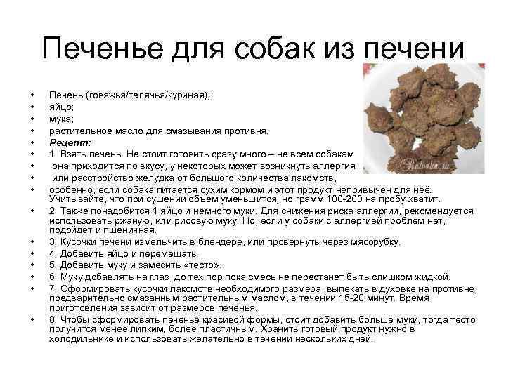 Можно ли собакам печень куриную или говяжью