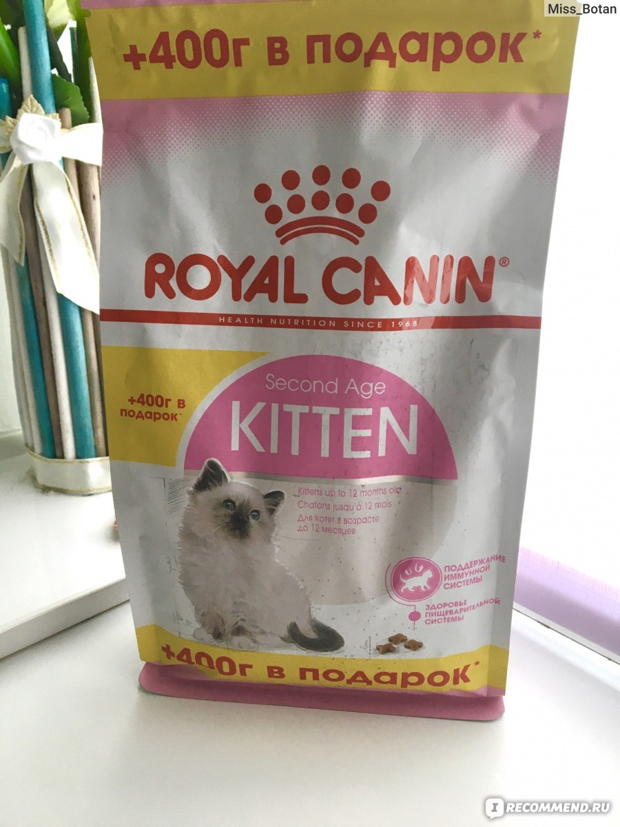 Роял Канин для кошек и котят: обзор всей линейки