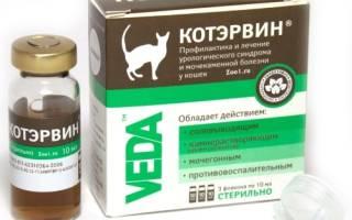 Котэрвин для кошек: инструкция по применению
