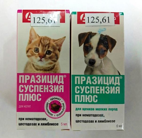 Празицид для кошек от глистов