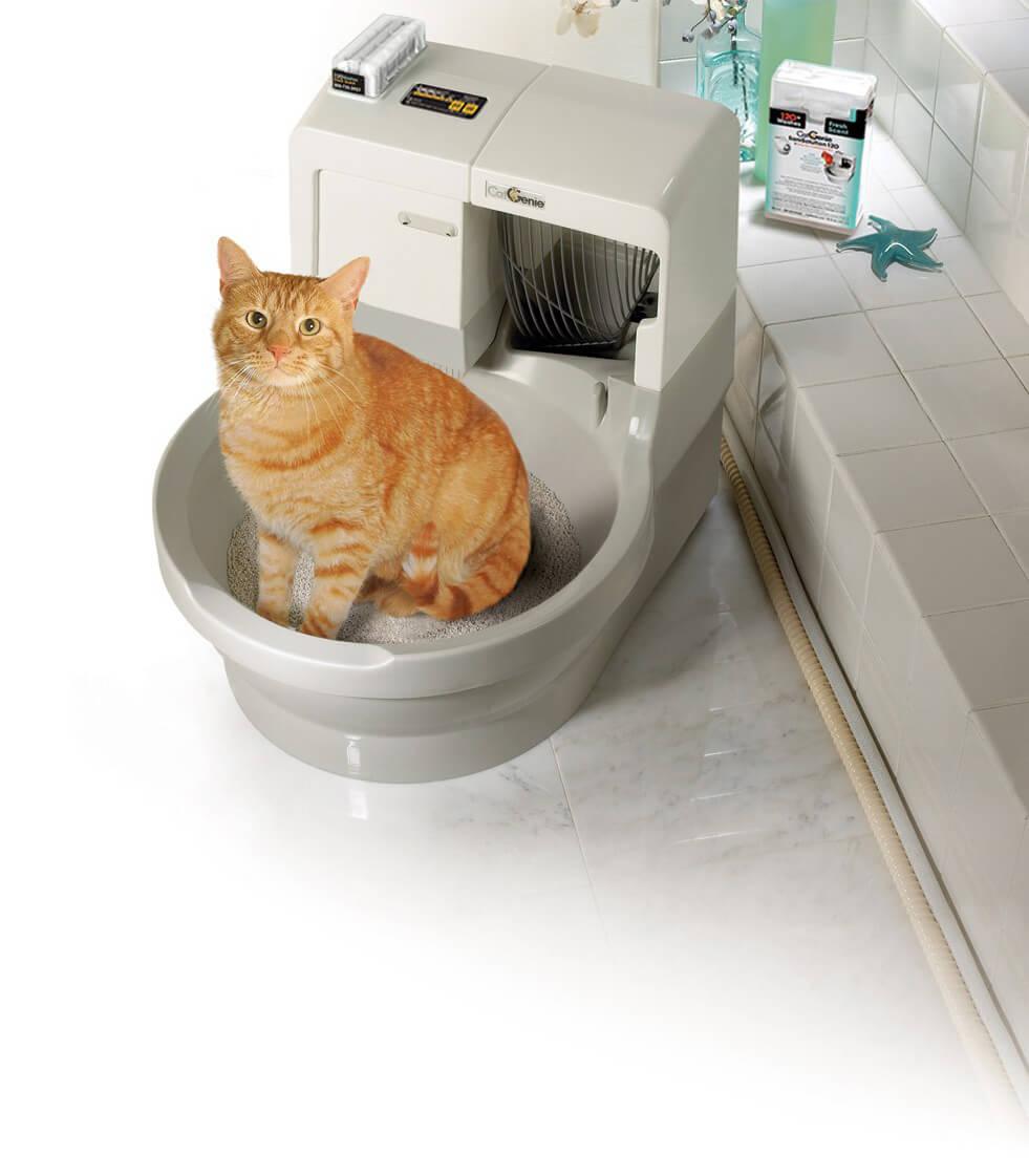 Автоматический туалет для кошек из России