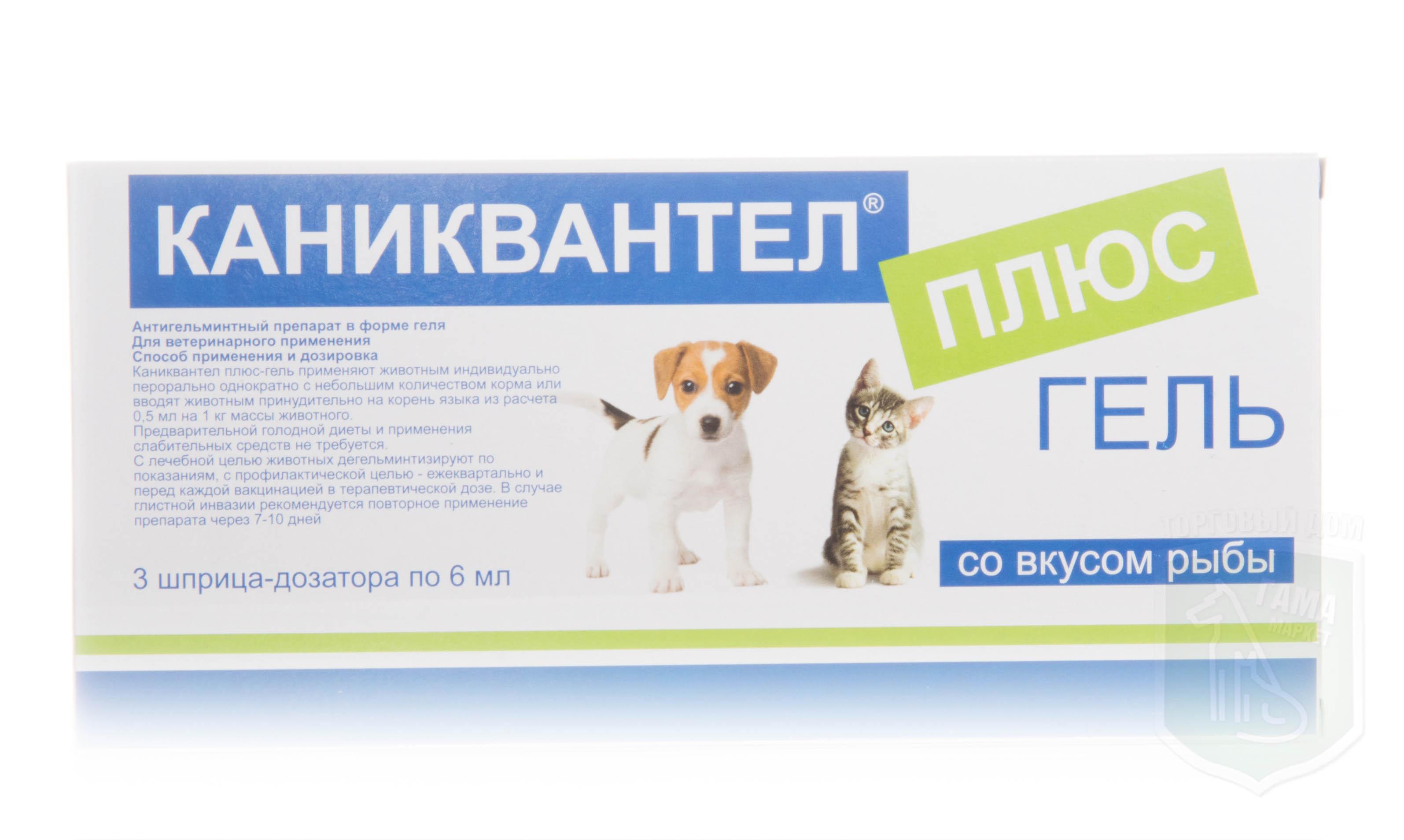 Каниквантел для собак: инструкция по применению