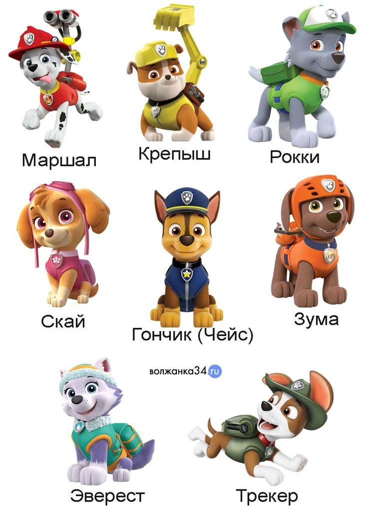 Герои щенячьего патруля: их имена, порода и отличительные особенности