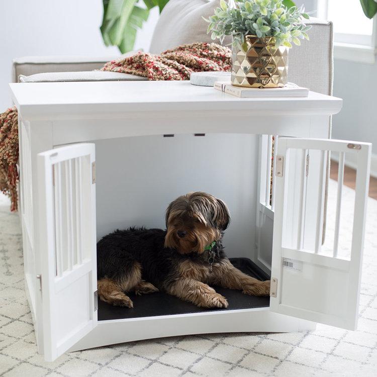 Зачем собаке нужно собственное место